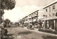 1960 ca LIDO DI JESOLO (VE) Bar e negozi in via BAFILE *Cartolina FG VG